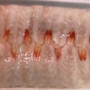 刺身玻璃蝦
